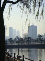 2008_12_21_012