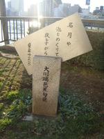 2009_01_17_058
