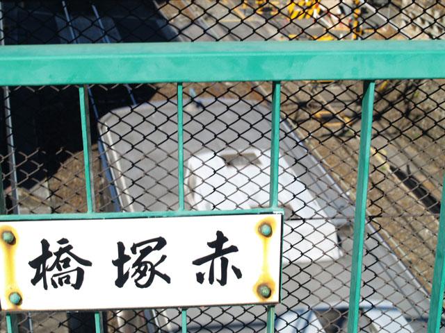 Tokyodaibutu01_2