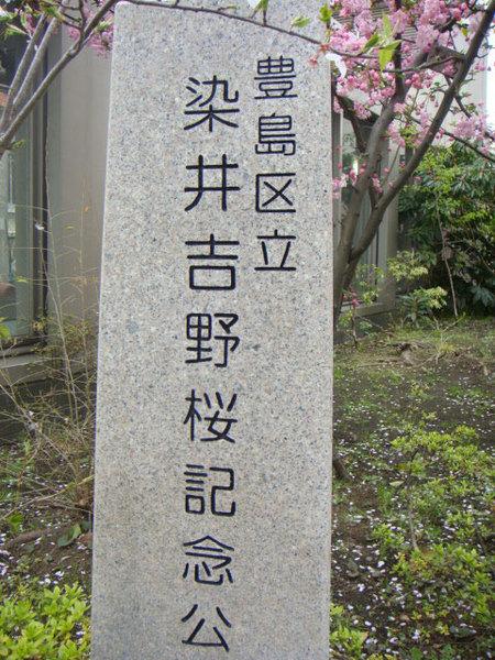 20100409001